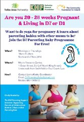 Flyer for Clients  D7 Parenting Baby Programme